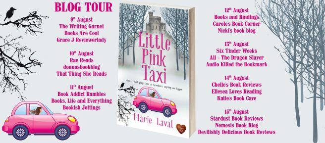 Little Pink Taxi Full Tour Banner.jpg