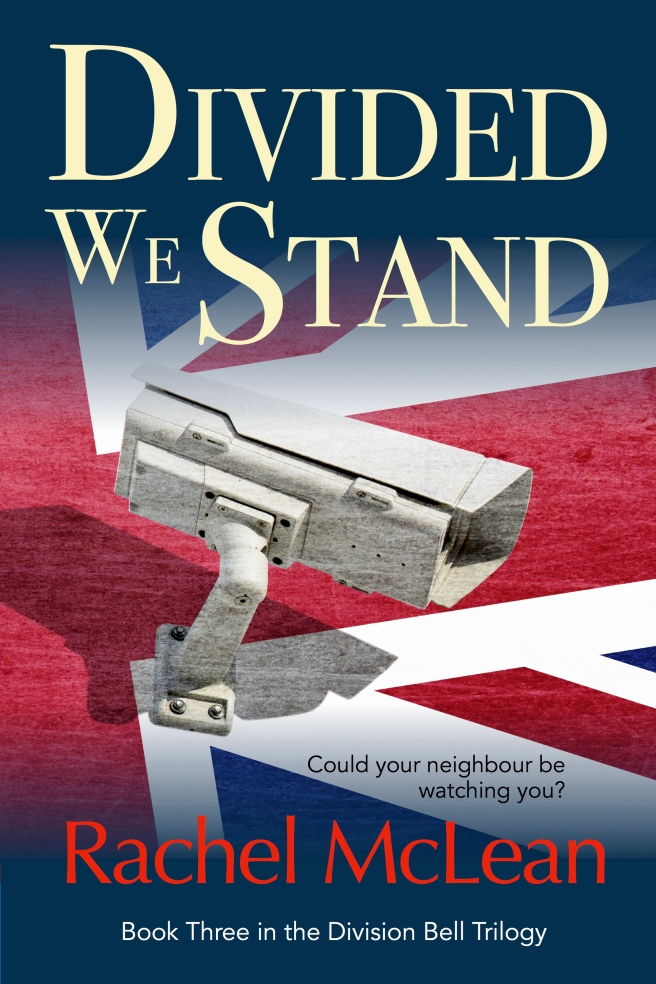 Divided We Stand Ebook