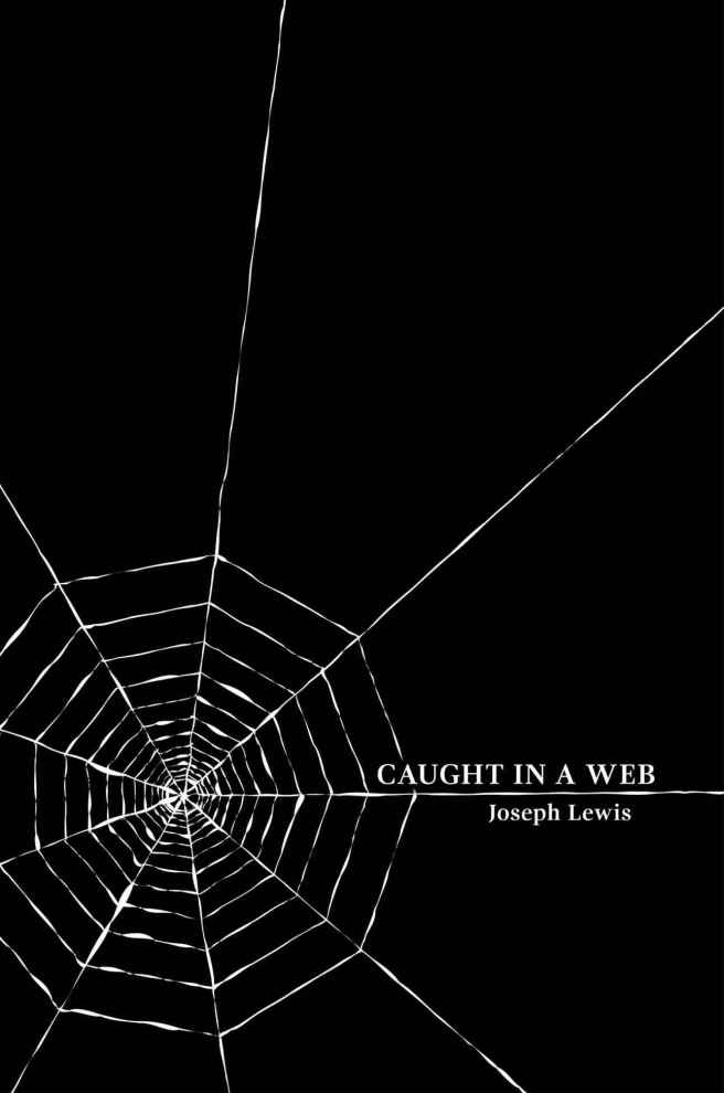 Caught in A Web Large Cover